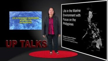 Life in the Marine Environment with Focus on the Philippines