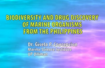UP TALKS | Marine Organisms from the Philippines: Biodiversity and Drug Discovery