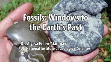 UP TALKS | Fossils: Windows to the Earth's Past