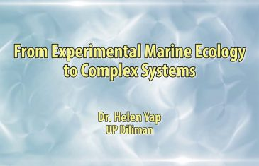UP TALKS | From Experimental Marine Biology to Complex Systems