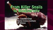 UP TALKS | From Killer Snails to Biodiversity