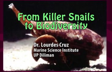 UP TALKS | From Killer Snails to Biodiversity