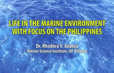 UP TALKS | Life in the Marine Environment with Focus on the Philippines