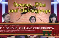 KALUSUGAN AY KARAPATAN | Episode 01: Dengue, Zika and Chikungunya