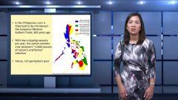 TVUP | University of the Philippines' Internet TV Network