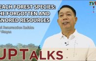 UP TALKS | Beach Forest Species: The Forgotten and Ignored Resources | Prof. Resurreccion Sadaba